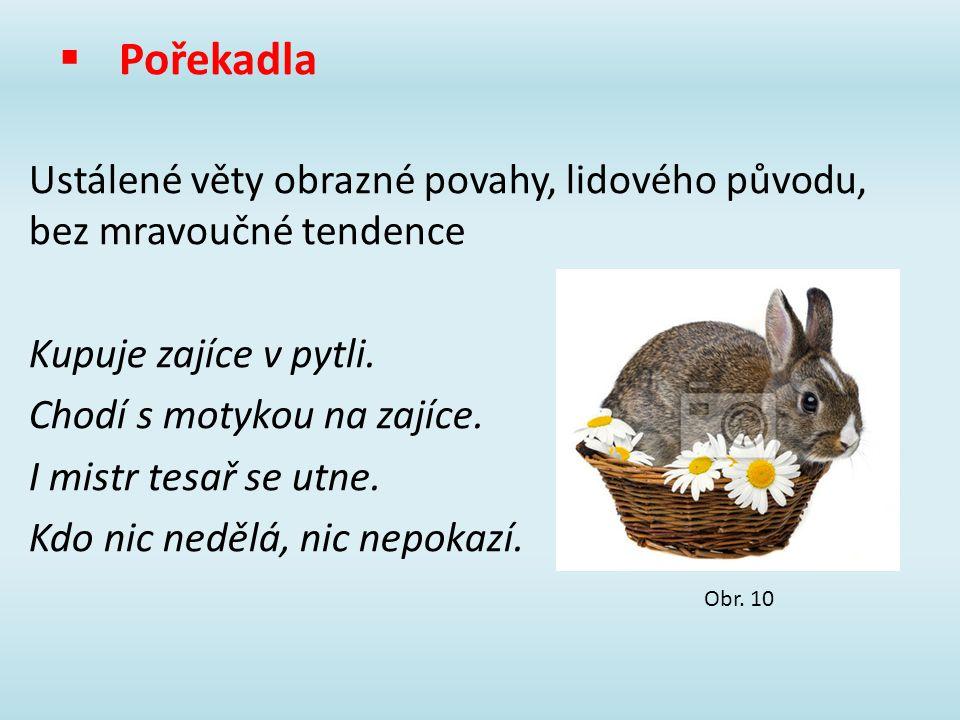  Pořekadla Ustálené věty obrazné povahy, lidového původu, bez mravoučné tendence Kupuje zajíce v pytli. Chodí s motykou na zajíce. I mistr tesař se u
