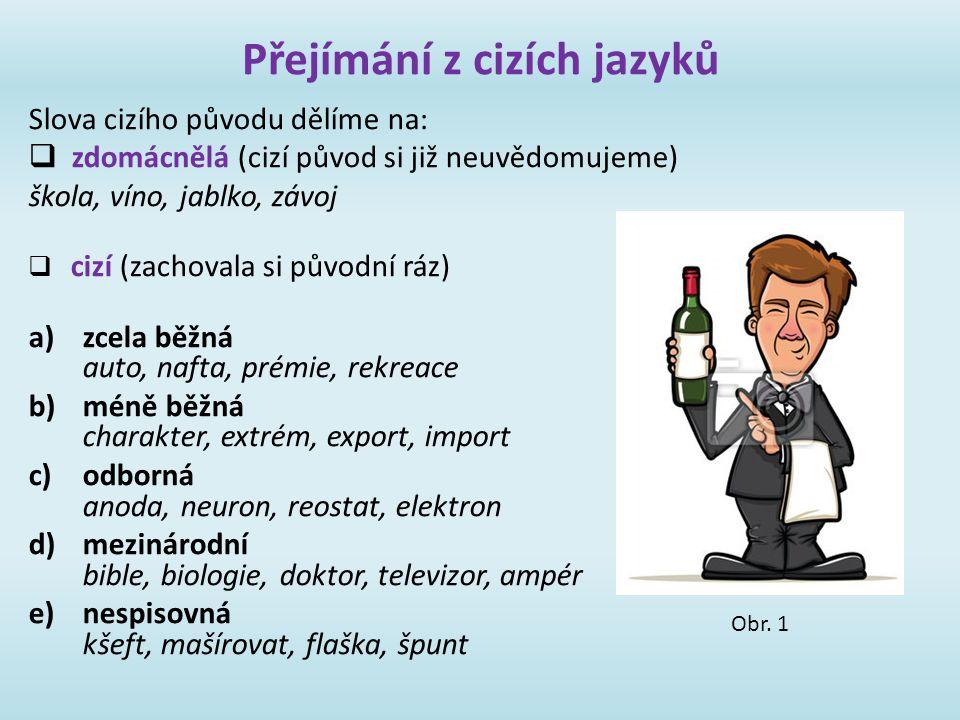 Přejímání z cizích jazyků Slova cizího původu dělíme na:  zdomácnělá (cizí původ si již neuvědomujeme) škola, víno, jablko, závoj  cizí (zachovala s