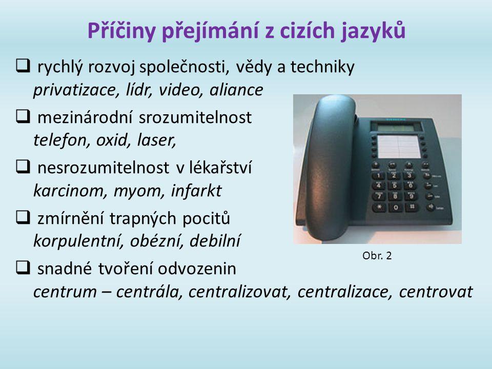 Příčiny přejímání z cizích jazyků  rychlý rozvoj společnosti, vědy a techniky privatizace, lídr, video, aliance  mezinárodní srozumitelnost telefon,
