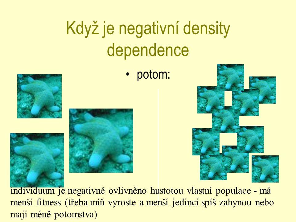 Když je negativní density dependence potom: individuum je negativně ovlivněno hustotou vlastní populace - má menší fitness (třeba míň vyroste a menší