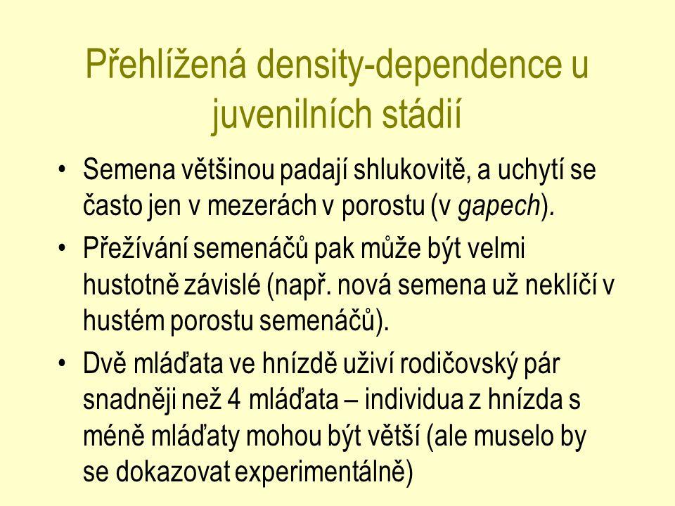 Přehlížená density-dependence u juvenilních stádií Semena většinou padají shlukovitě, a uchytí se často jen v mezerách v porostu (v gapech ). Přežíván