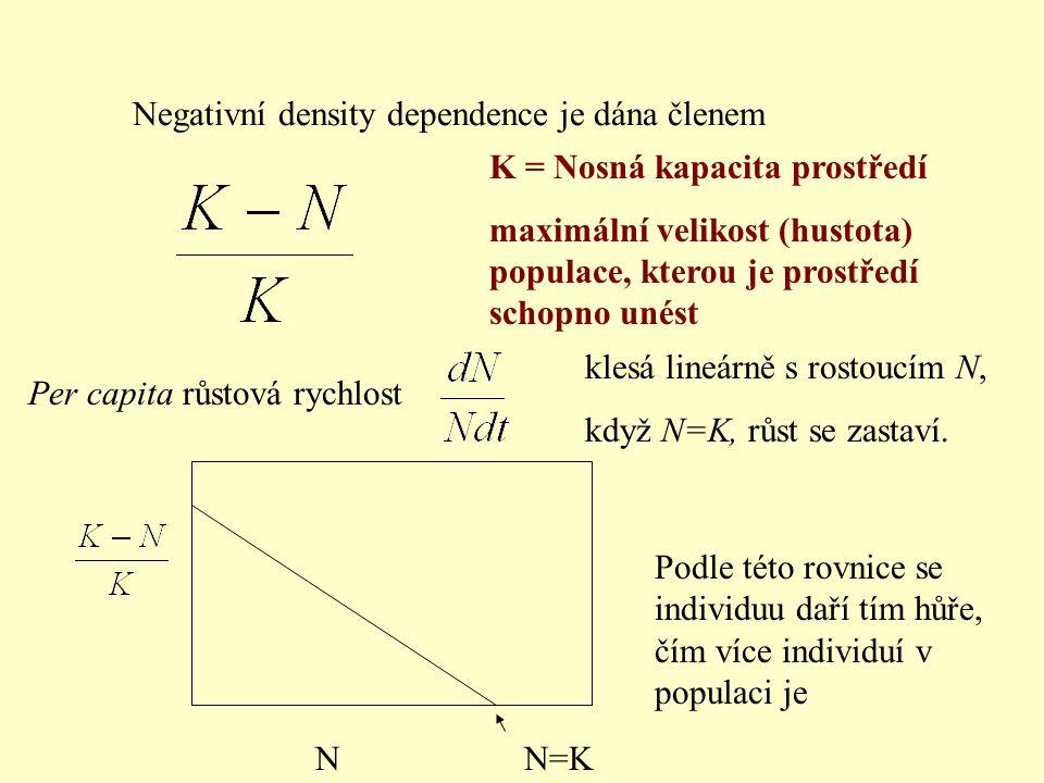Negativní density dependence je dána členem Per capita růstová rychlost klesá lineárně s rostoucím N, když N=K, růst se zastaví. NN=K Podle této rovni