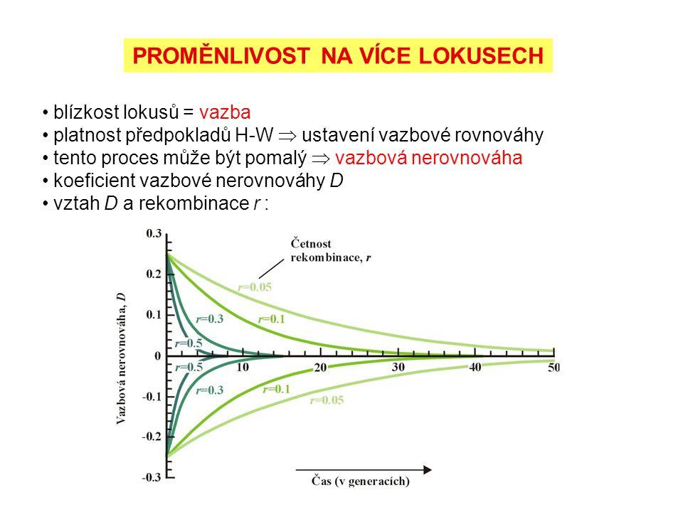 PROMĚNLIVOST NA VÍCE LOKUSECH blízkost lokusů = vazba platnost předpokladů H-W  ustavení vazbové rovnováhy tento proces může být pomalý  vazbová ner