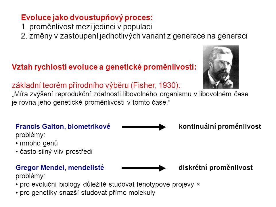 """Vztah rychlosti evoluce a genetické proměnlivosti: základní teorém přírodního výběru (Fisher, 1930): """"Míra zvýšení reprodukční zdatnosti libovolného o"""