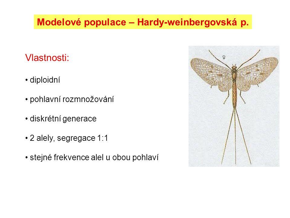 Modelové populace – Hardy-weinbergovská p. Vlastnosti: diploidní pohlavní rozmnožování diskrétní generace 2 alely, segregace 1:1 stejné frekvence alel