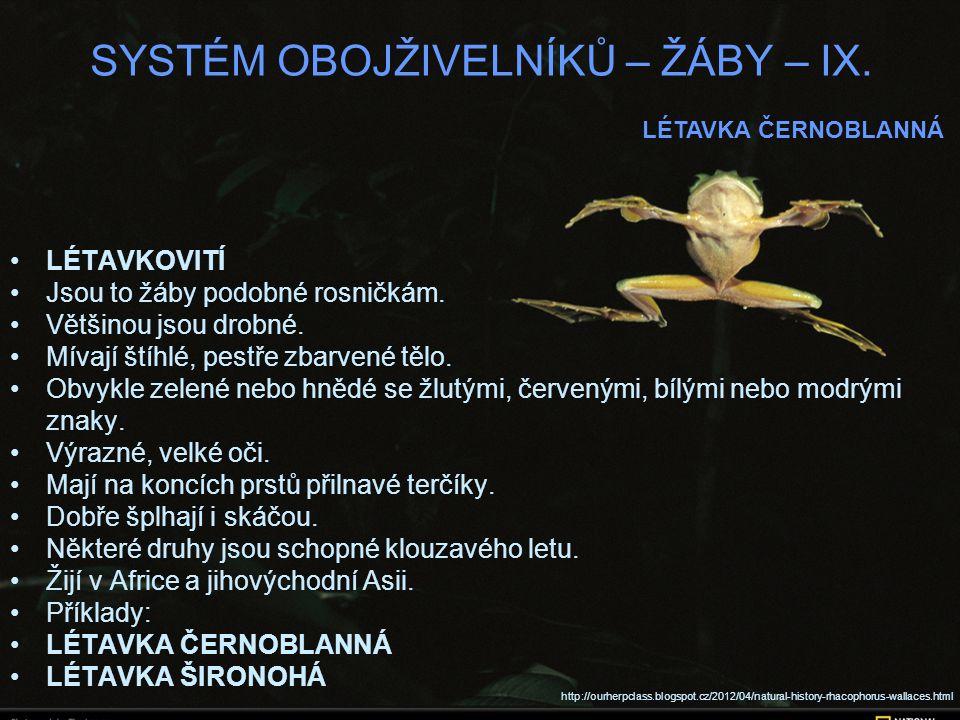 SYSTÉM OBOJŽIVELNÍKŮ – ŽÁBY – IX. LÉTAVKOVITÍ Jsou to žáby podobné rosničkám.