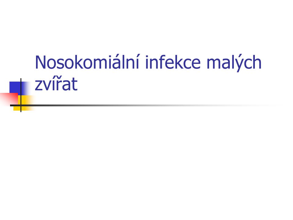 Nosokomiální infekce malých zvířat