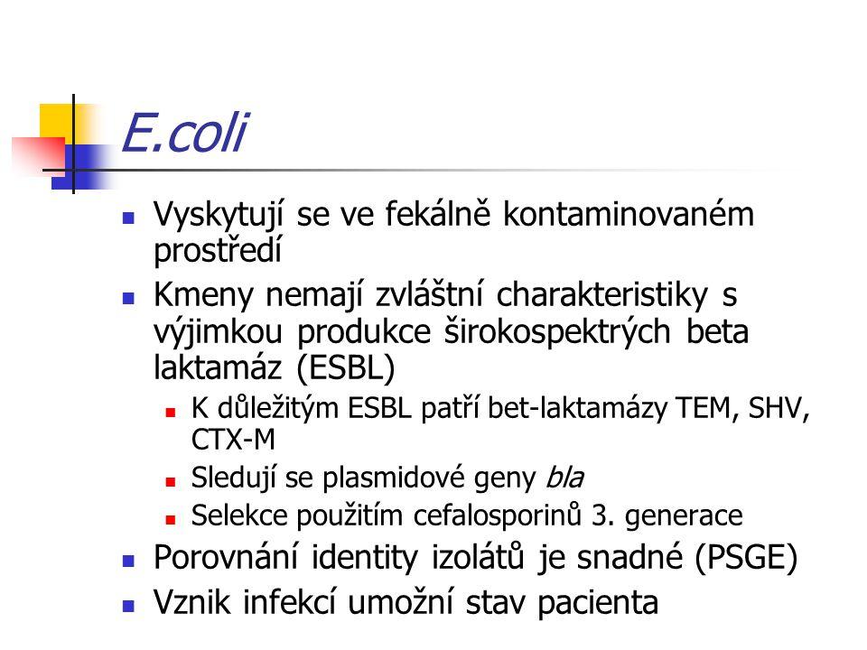 E.coli Vyskytují se ve fekálně kontaminovaném prostředí Kmeny nemají zvláštní charakteristiky s výjimkou produkce širokospektrých beta laktamáz (ESBL) K důležitým ESBL patří bet-laktamázy TEM, SHV, CTX-M Sledují se plasmidové geny bla Selekce použitím cefalosporinů 3.