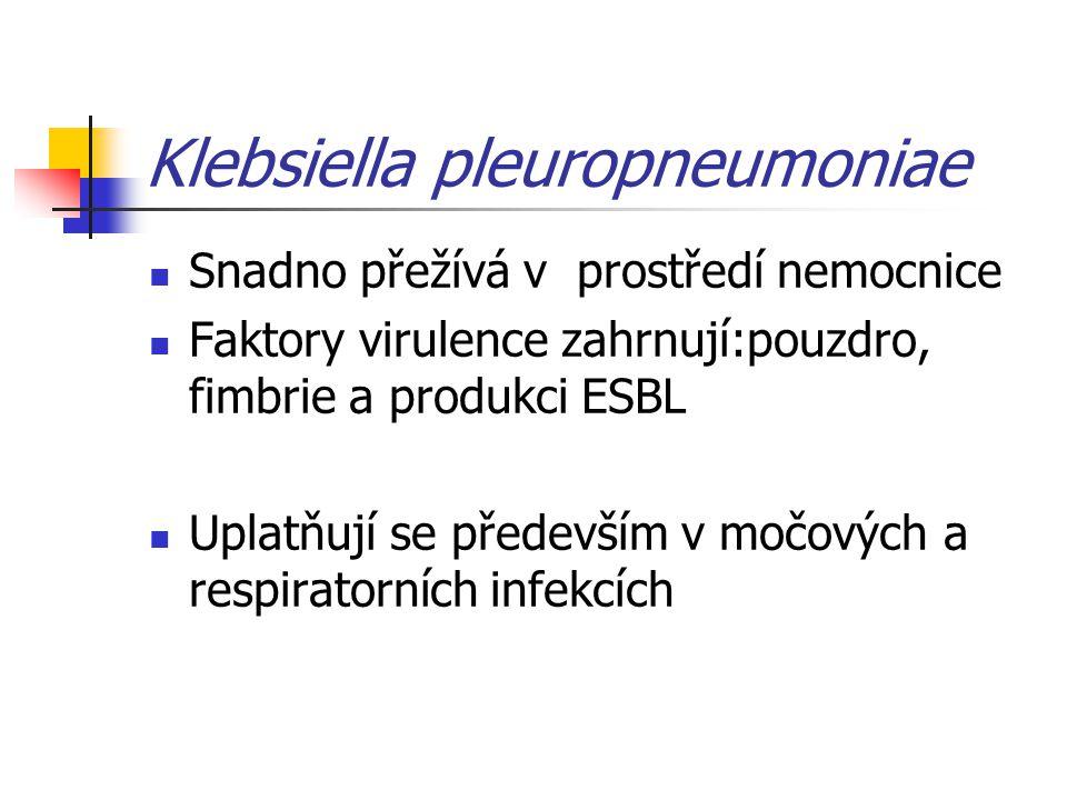 Klebsiella pleuropneumoniae Snadno přežívá v prostředí nemocnice Faktory virulence zahrnují:pouzdro, fimbrie a produkci ESBL Uplatňují se především v močových a respiratorních infekcích