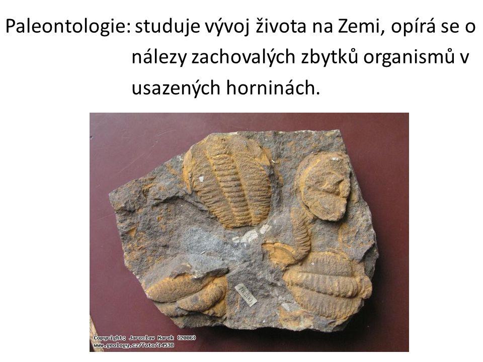 Paleontologie: studuje vývoj života na Zemi, opírá se o nálezy zachovalých zbytků organismů v usazených horninách.