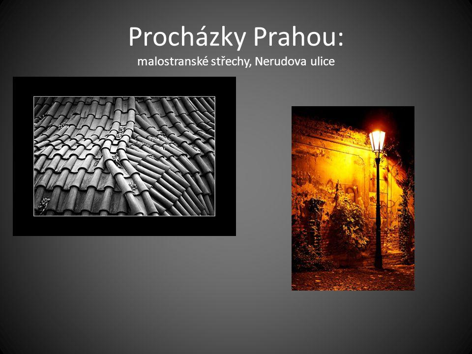 Procházky Prahou: malostranské střechy, Nerudova ulice