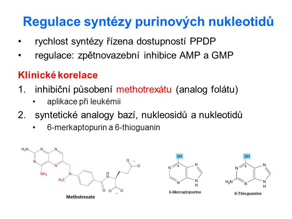 Regulace syntézy purinových nukleotidů rychlost syntézy řízena dostupností PPDP regulace: zpětnovazební inhibice AMP a GMP Klinické korelace 1.inhibič