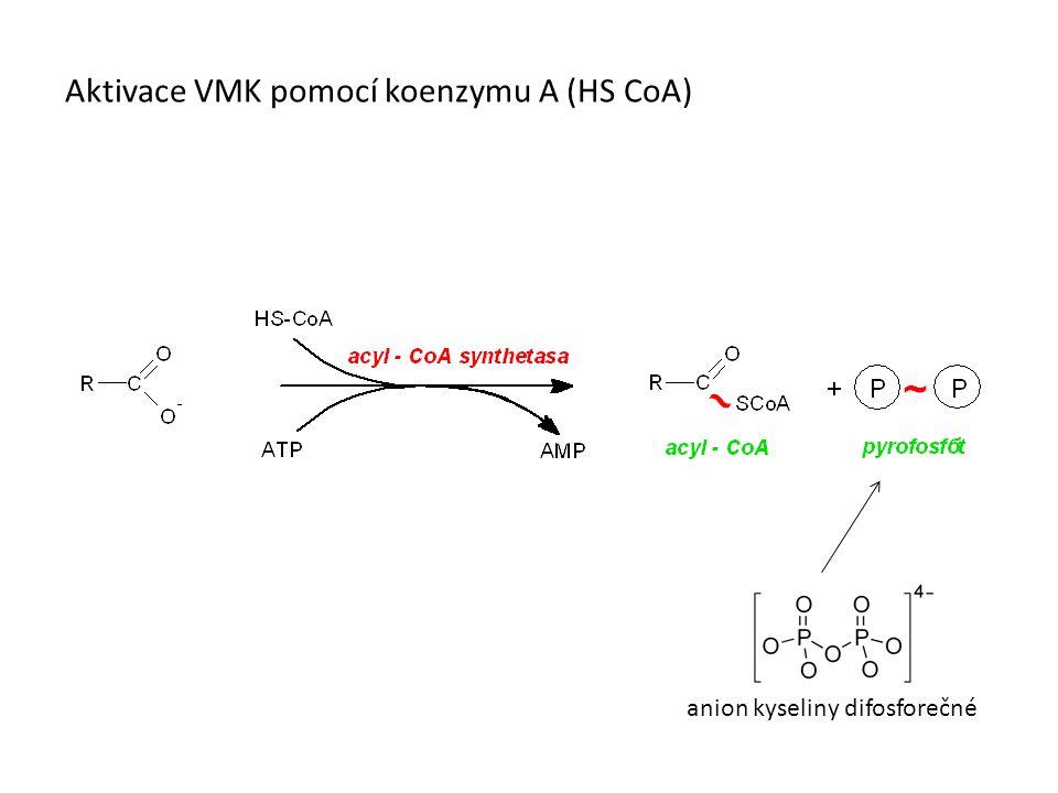 Aktivace VMK pomocí koenzymu A (HS CoA) anion kyseliny difosforečné