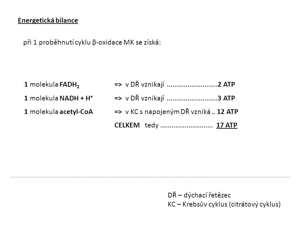 Příklad: CH 3 (CH 2 ) 14 COOH kyselina palmitová 1 molekula FADH 2 => v DŘ vznikají...........................2 ATP 1 molekula NADH + H + => v DŘ vznikají...........................3 ATP 1 molekula acetyl-CoA => v KC s napojeným DŘ vzniká..
