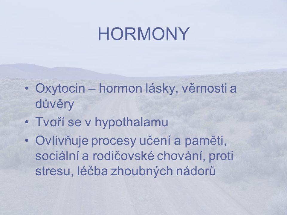 HORMONY Oxytocin – hormon lásky, věrnosti a důvěry Tvoří se v hypothalamu Ovlivňuje procesy učení a paměti, sociální a rodičovské chování, proti stresu, léčba zhoubných nádorů