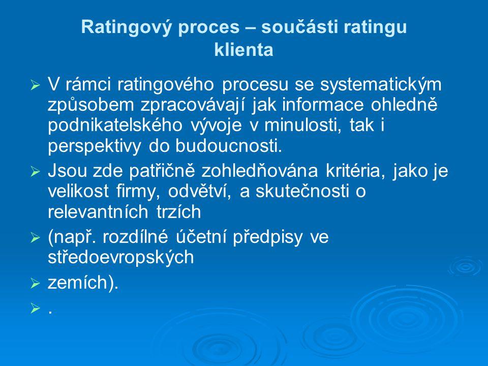 Ratingový proces – součásti ratingu klienta   V rámci ratingového procesu se systematickým způsobem zpracovávají jak informace ohledně podnikatelského vývoje v minulosti, tak i perspektivy do budoucnosti.