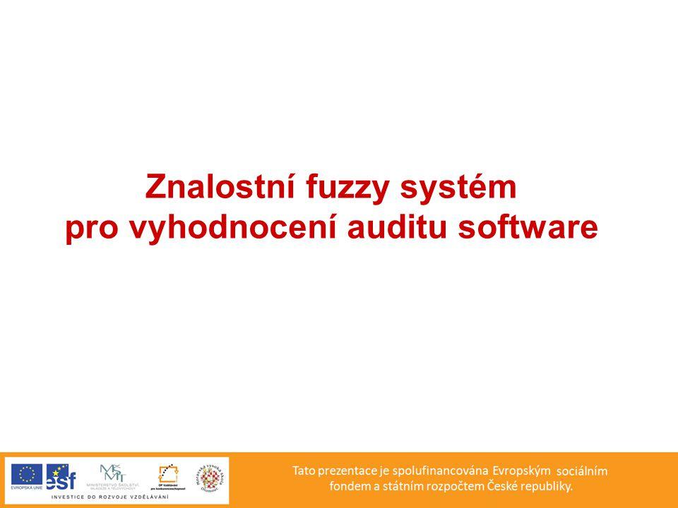Znalostní fuzzy systém pro vyhodnocení auditu software