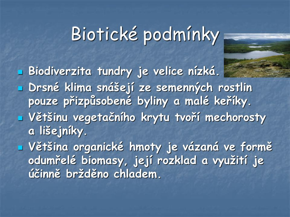 Biotické podmínky Biodiverzita tundry je velice nízká.