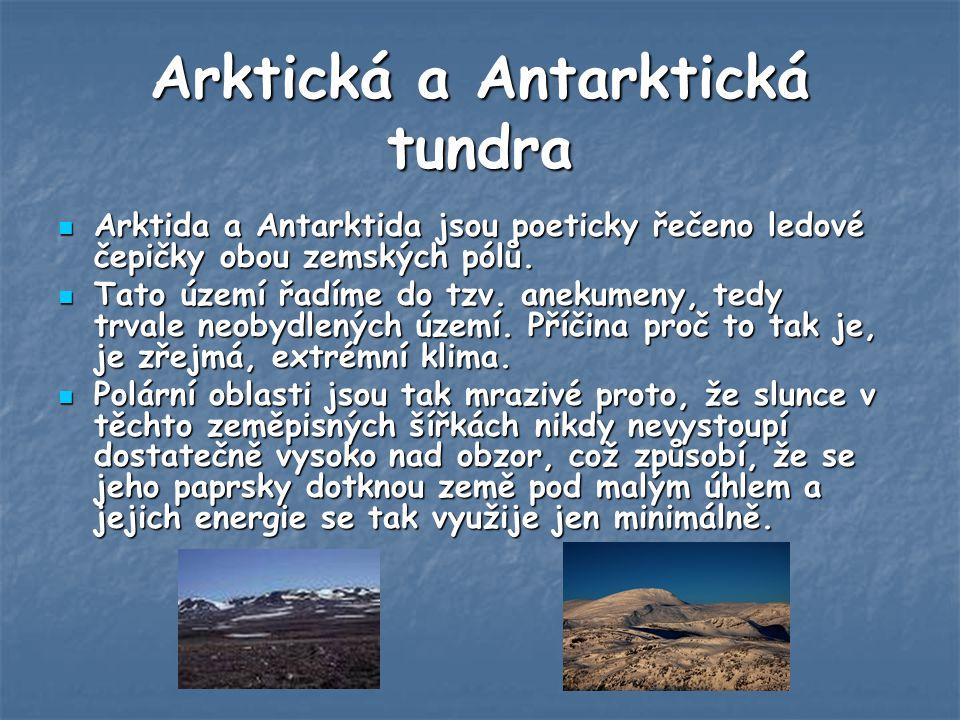Arktická a Antarktická tundra Arktida a Antarktida jsou poeticky řečeno ledové čepičky obou zemských pólů.