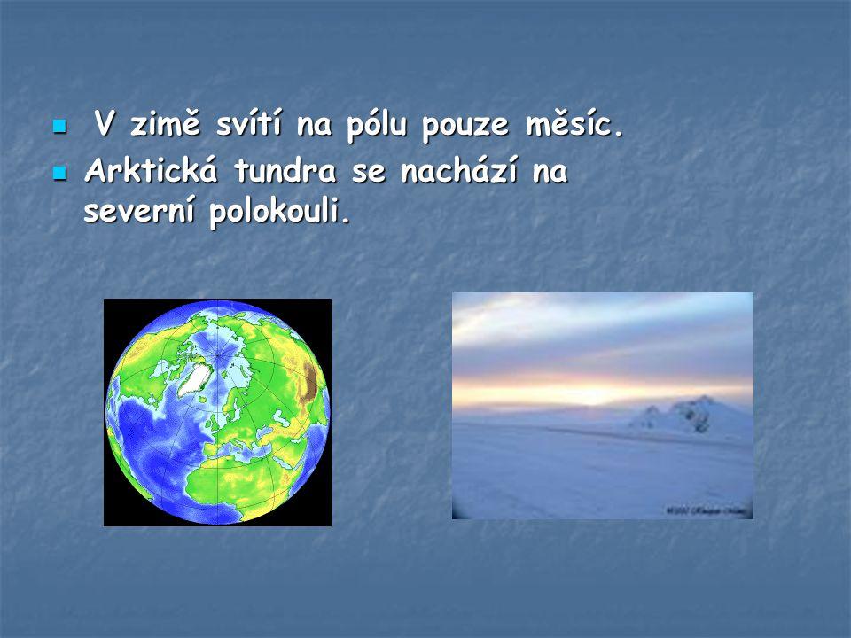 V zimě svítí na pólu pouze měsíc.V zimě svítí na pólu pouze měsíc.