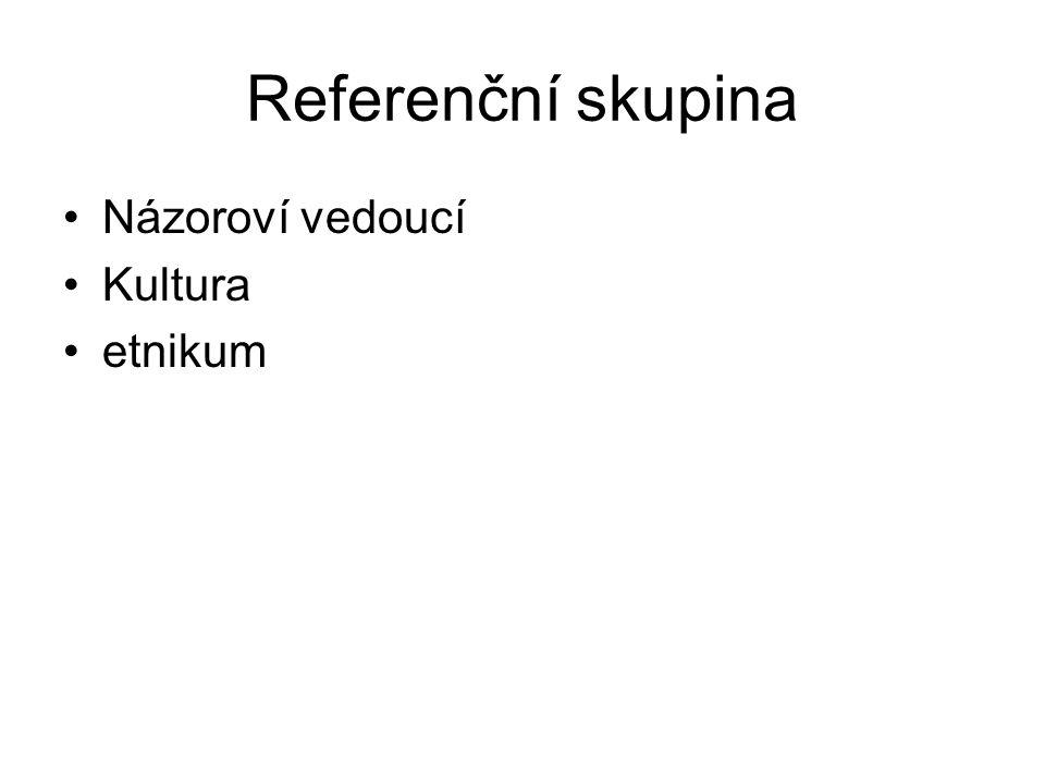 Referenční skupina Názoroví vedoucí Kultura etnikum