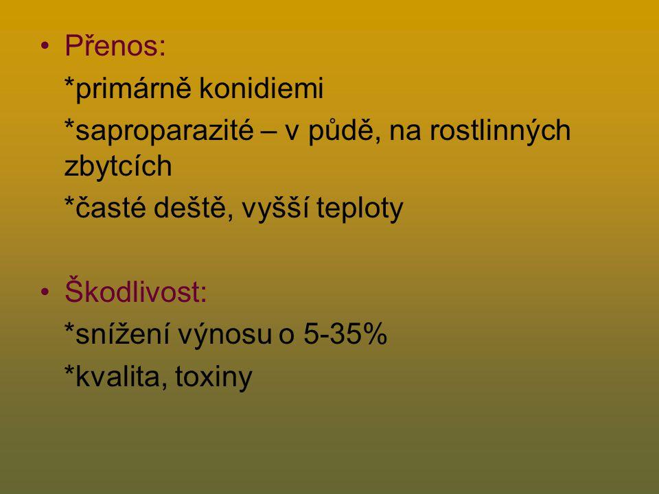 Přenos: *primárně konidiemi *saproparazité – v půdě, na rostlinných zbytcích *časté deště, vyšší teploty Škodlivost: *snížení výnosu o 5-35% *kvalita, toxiny