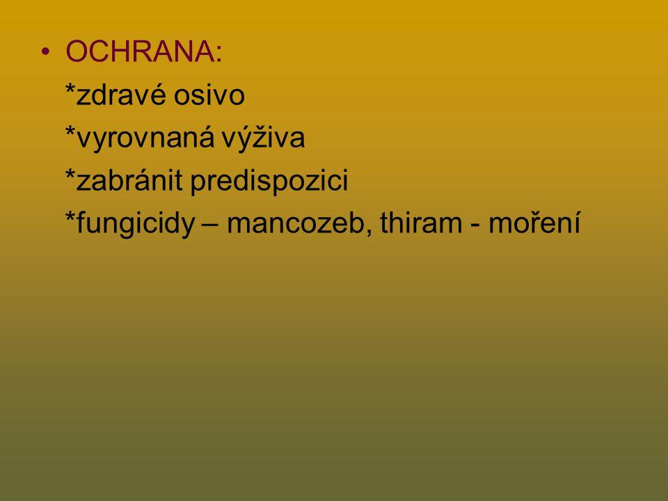 OCHRANA: *zdravé osivo *vyrovnaná výživa *zabránit predispozici *fungicidy – mancozeb, thiram - moření