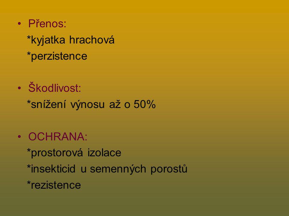 Žlutá mozaika hrachu Bean yellow mosaic virus, BYMV Symptomy: *žlutozelená mozaika listů i palistů *zkadeření listů *nad 20°C a pod 12°C symptomy maskovány