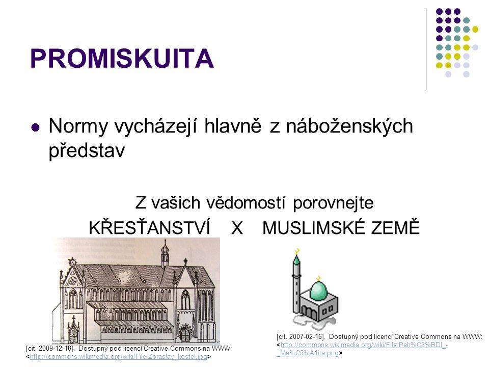 PROMISKUITA Normy vycházejí hlavně z náboženských představ Z vašich vědomostí porovnejte KŘESŤANSTVÍ X MUSLIMSKÉ ZEMĚ [cit. 2007-02-16]. Dostupný pod