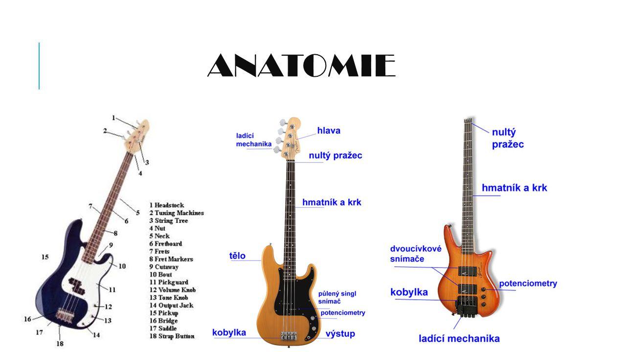 CO JE BASKYTARA.Baskytara je celkem moderní nástroj.