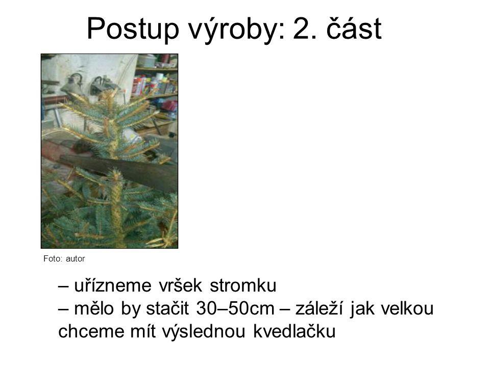 Postup výroby: 2. část Foto: autor – uřízneme vršek stromku – mělo by stačit 30–50cm – záleží jak velkou chceme mít výslednou kvedlačku