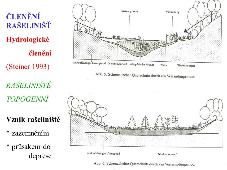 ČLENĚNÍ RAŠELINIŠŤ Hydrologické členění (Steiner 1993) Vznik rašeliniště * zazemněním * průsakem do deprese RAŠELINIŠTĚ TOPOGENNÍ