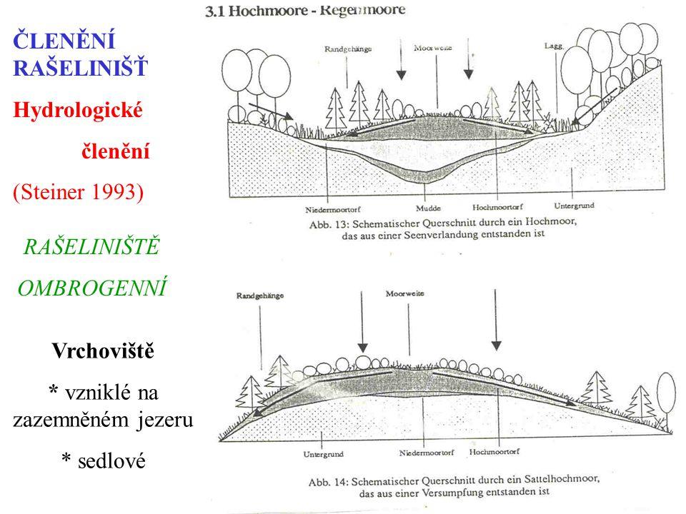 ČLENĚNÍ RAŠELINIŠŤ Hydrologické členění (Steiner 1993) RAŠELINIŠTĚ OMBROGENNÍ Vrchoviště * vzniklé na zazemněném jezeru * sedlové