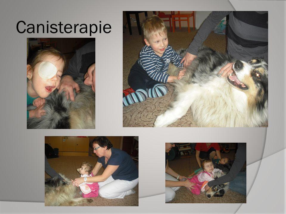 Hipoterapie