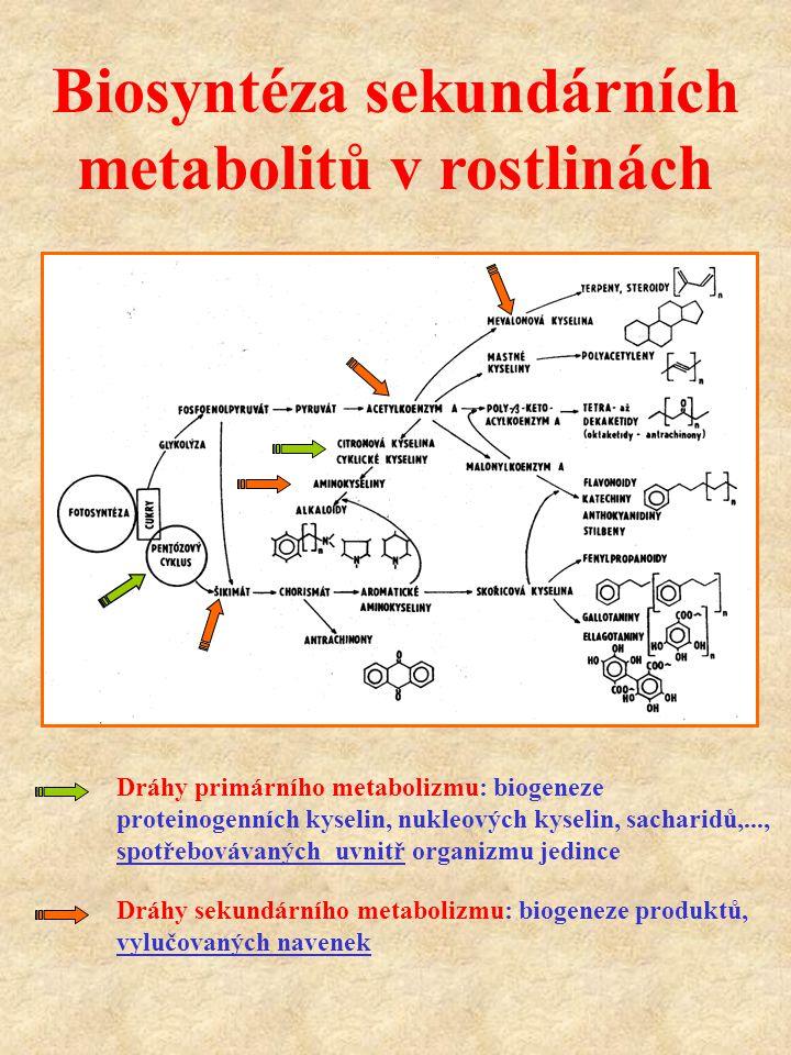 Biosyntéza sekundárních metabolitů v rostlinách Dráhy primárního metabolizmu: biogeneze proteinogenních kyselin, nukleových kyselin, sacharidů,..., sp