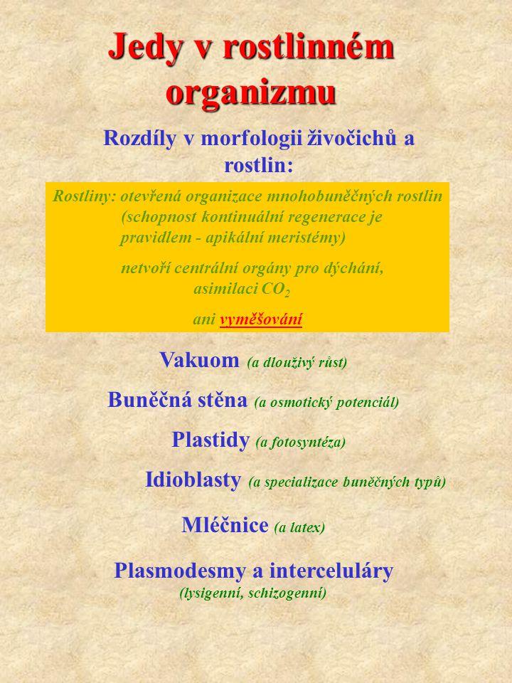 Toxikologicky významné obsahové látky rostlin Silice : prchavé lipofilní metabolity deriváty terpenu (thujon - Cupressaceae, pulegon - Lamiaceae deriváty fenylpropanu - apiol, safrol, myristicin - Apiaceae, Lauraceae, Myristicaceae) (chuťové vlastnosti, korigencia vůně, dráždivé až jedovaté monoterpeny) Alkaloidy : organické dusíkaté báze deriváty pyridinu (koniin (6), nikotin (31), hyosciamin, atropin, skopolamin (30), kokain) deriváty indolu : psilocybin, LSD, námelové alkaloidy steroidní alkaloidy : solanin (32) deriváty isochinolinu: morfin, papaverin (23), kolchicin (35) terpenické alkaloidy: akonitin (oměj Aconitum) aminy :efedrin (Ephedra) v rostlinách jako soli organických kyselin (k.