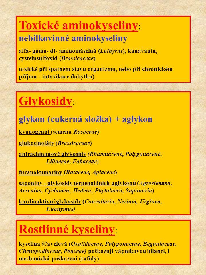 Polyacetylenové kyseliny : sloučeniny s trojnou vazbou v molekule Cikutoxin (3) - Cicuta virosa - rozpuk jízlivý Terpeny : sloučeniny s různým počtem isoprenových jednotek Monoterpeny (Cupressaceae, Lamiaceae Sesquiterpeny (gossypol - semena bavlníku, helenalin - Arnica) Diterpeny (alergeny, kancerogeny - andromedotoxin, mezerein - Daphne) Triterpeny (cucurbitaciny, Cucurbitaceae, lantadeny - Verbenaceae) Proteiny a peptidy : Ricin (semena Euphorbiaceae, abrin, robin, fasin (Fabaceae) - Viscum - viscotoxiny lektiny (schopnost specifické vazby na cukerné komponenty membrán (Fabaceae) Vzorce 1Vzorce 2Vzorce 3