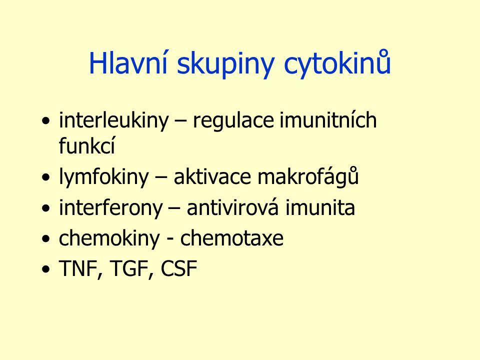 Hlavní skupiny cytokinů interleukiny – regulace imunitních funkcí lymfokiny – aktivace makrofágů interferony – antivirová imunita chemokiny - chemotaxe TNF, TGF, CSF