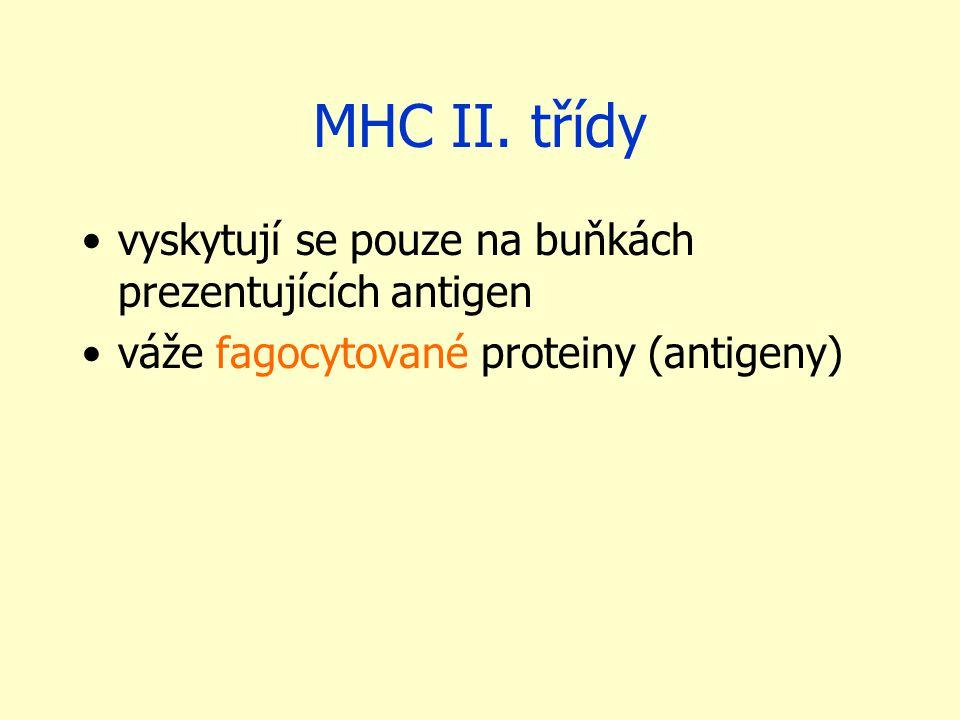 MHC II.