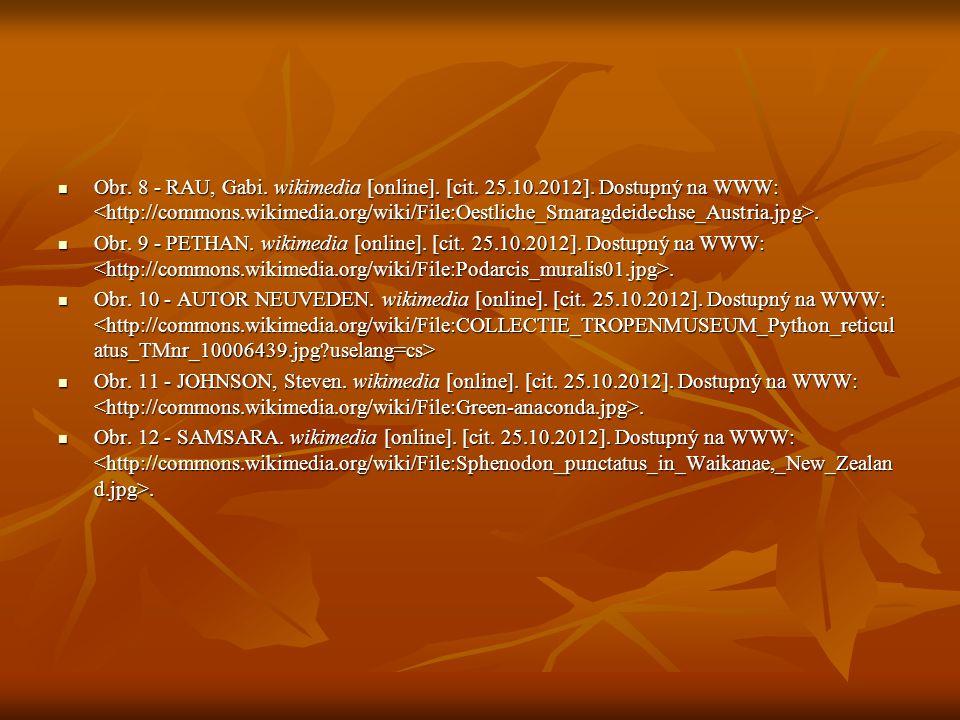 Obr. 8 - RAU, Gabi. wikimedia [online]. [cit. 25.10.2012]. Dostupný na WWW:. Obr. 8 - RAU, Gabi. wikimedia [online]. [cit. 25.10.2012]. Dostupný na WW