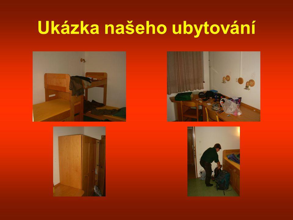 Různé Snímek č.1- Odpolední siesta Snímek č.2- Jeden z našich průvodců
