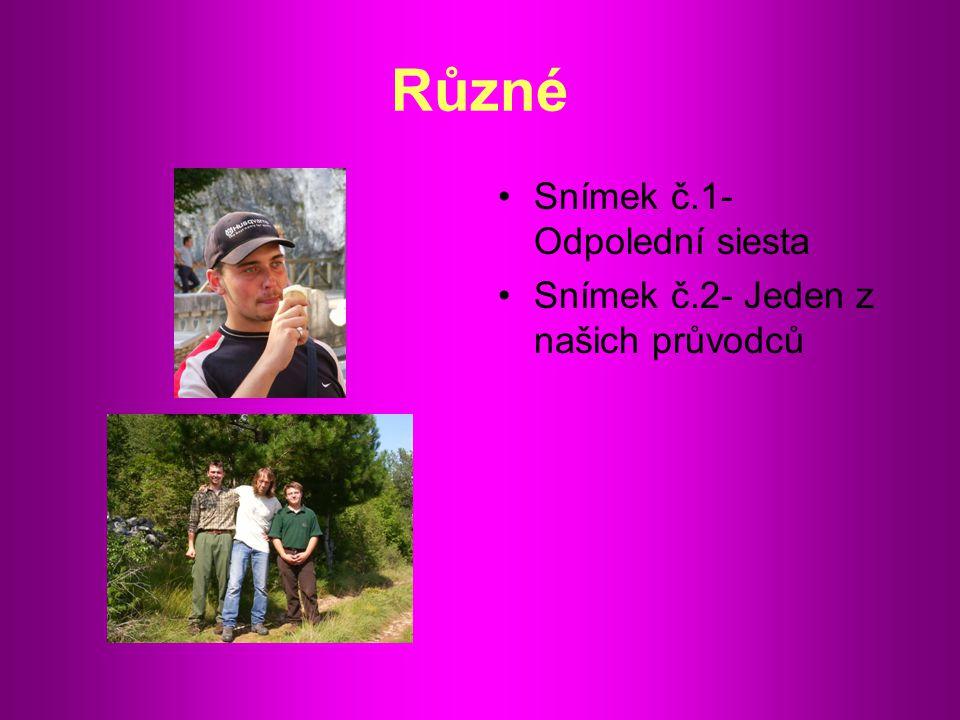 Závěr : Zlepšení v Anglickém jazyce Poznání slovinské kultury Poznání nových pěstebních metod dané oblasti