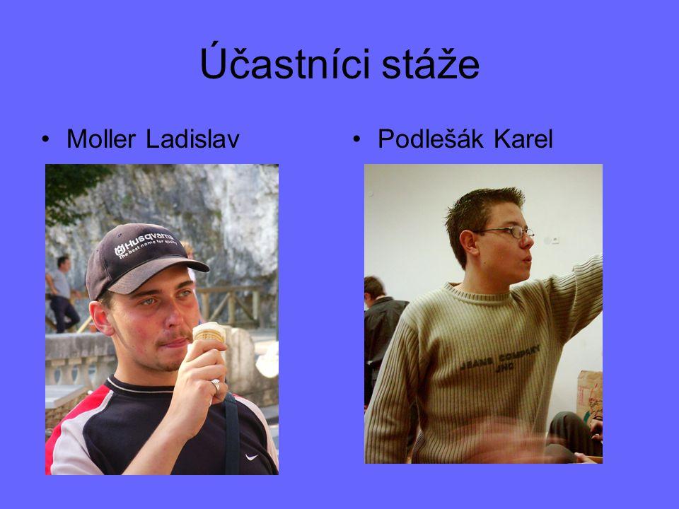 Účastníci stáže Moller LadislavPodlešák Karel