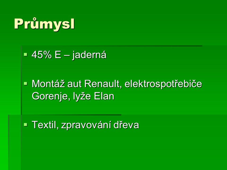 Průmysl  45% E – jaderná  Montáž aut Renault, elektrospotřebiče Gorenje, lyže Elan  Textil, zpravování dřeva