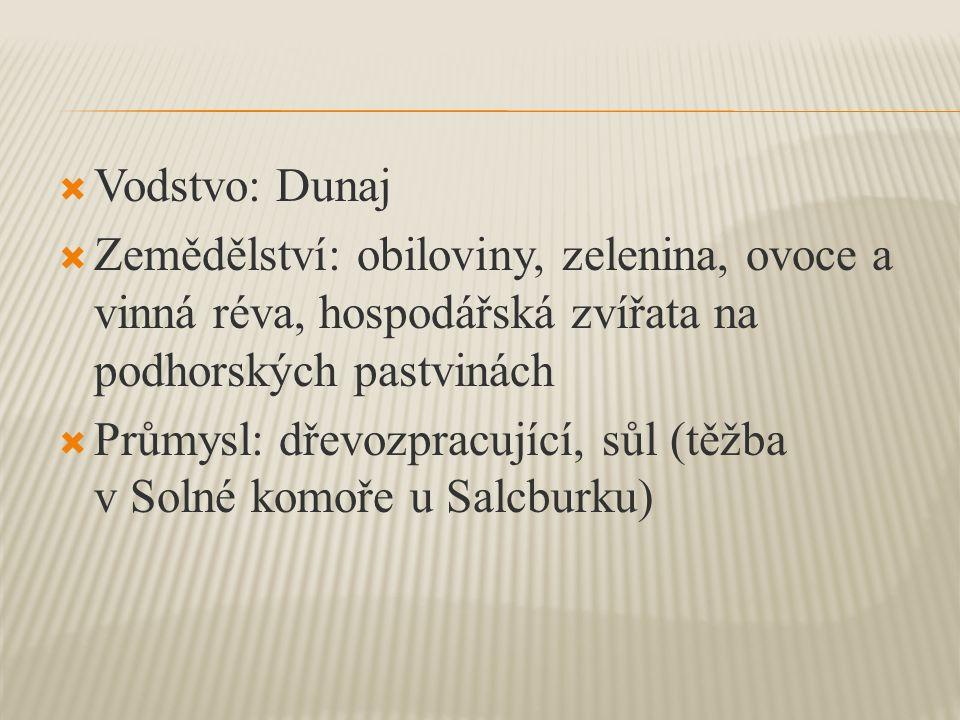  Vodstvo: Dunaj  Zemědělství: obiloviny, zelenina, ovoce a vinná réva, hospodářská zvířata na podhorských pastvinách  Průmysl: dřevozpracující, sůl (těžba v Solné komoře u Salcburku)