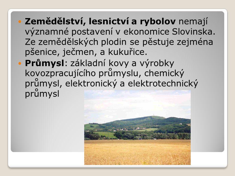 Zemědělství, lesnictví a rybolov nemají významné postavení v ekonomice Slovinska. Ze zemědělských plodin se pěstuje zejména pšenice, ječmen, a kukuřic