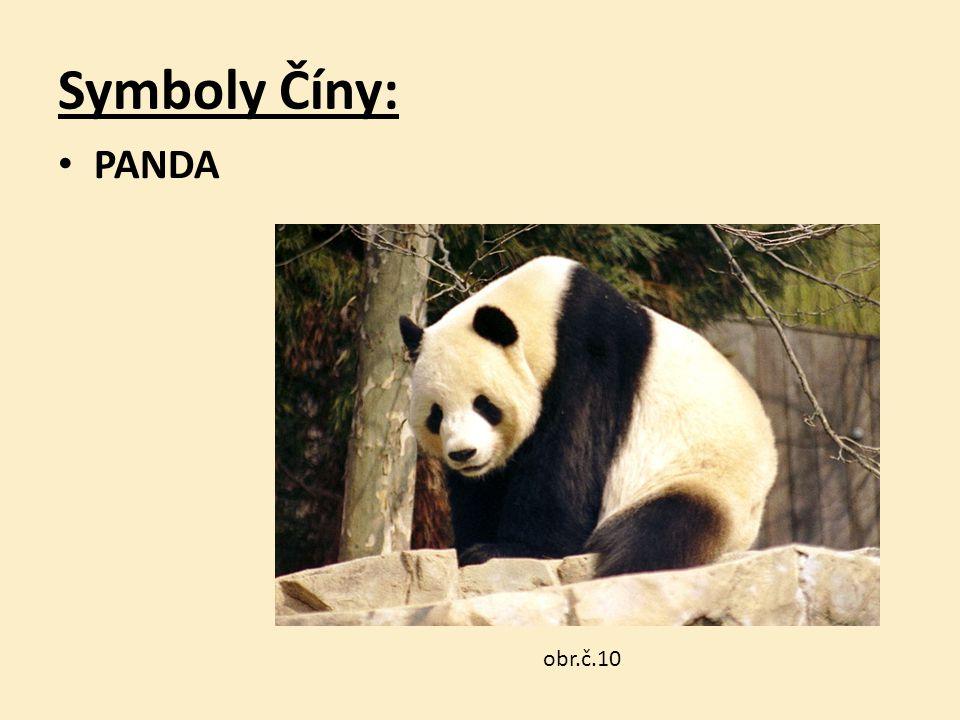 Symboly Číny: PANDA obr.č.10