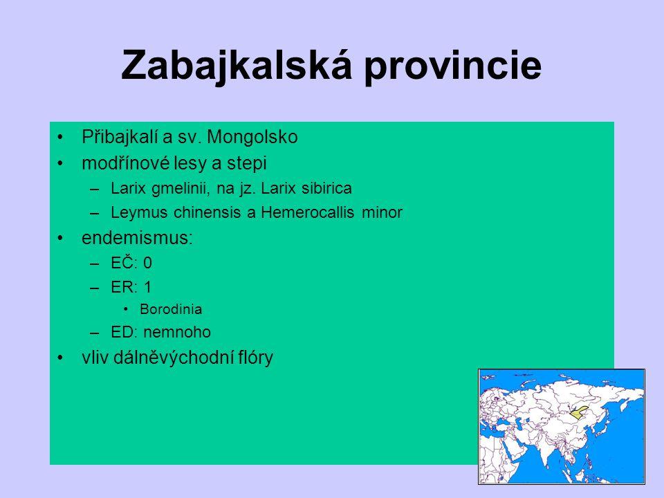 Zabajkalská provincie Přibajkalí a sv. Mongolsko modřínové lesy a stepi –Larix gmelinii, na jz. Larix sibirica –Leymus chinensis a Hemerocallis minor