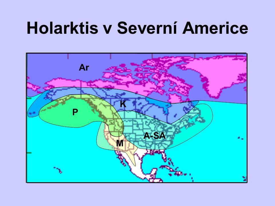 Holarktis v Severní Americe Ar P M K A-SA