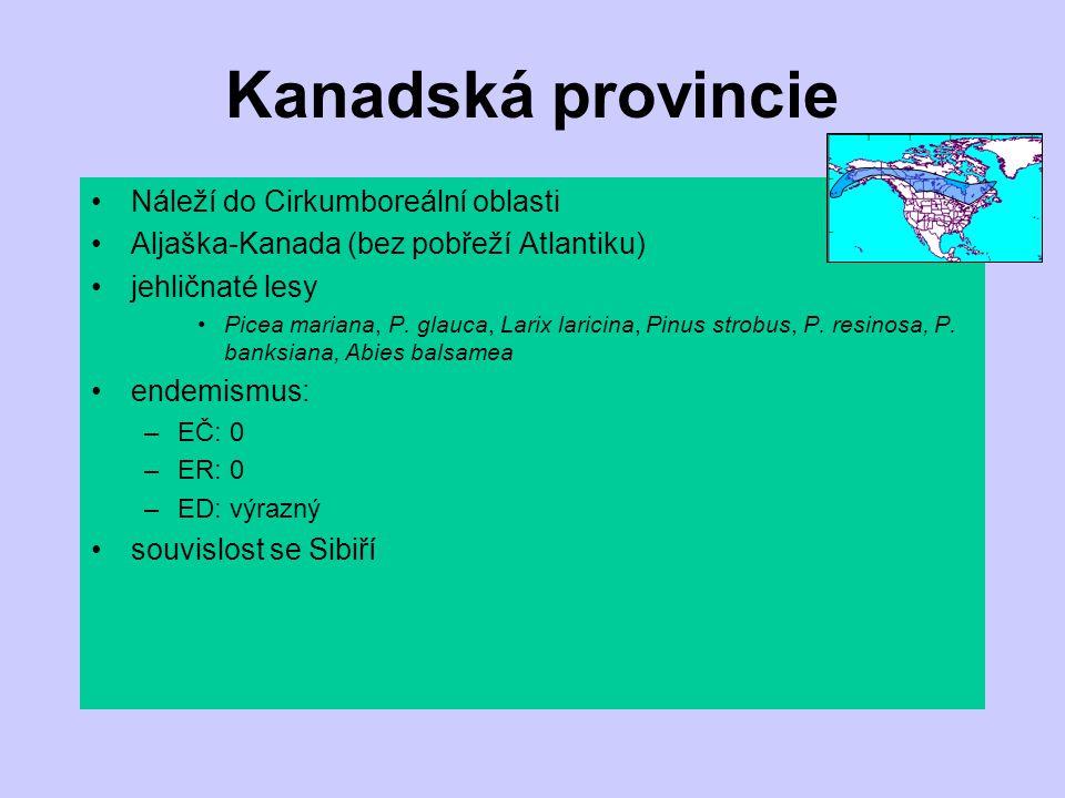Kanadská provincie Náleží do Cirkumboreální oblasti Aljaška-Kanada (bez pobřeží Atlantiku) jehličnaté lesy Picea mariana, P. glauca, Larix laricina, P